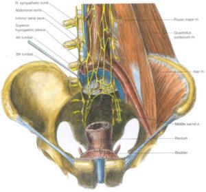 Hypogastric Plexus Block